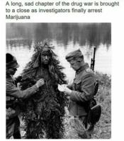 /arrest_the_marijuana.jpg