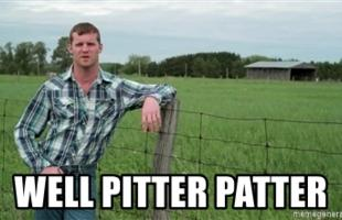 Image result for pitter patter gif