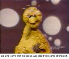 /sesame_street/fun_cookie.png